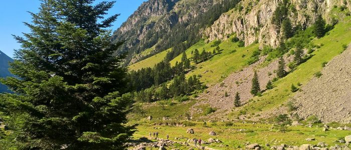 Cauterets-VALLE_LUTOUR_THERMES_DE_CAUTERETS-1500x530