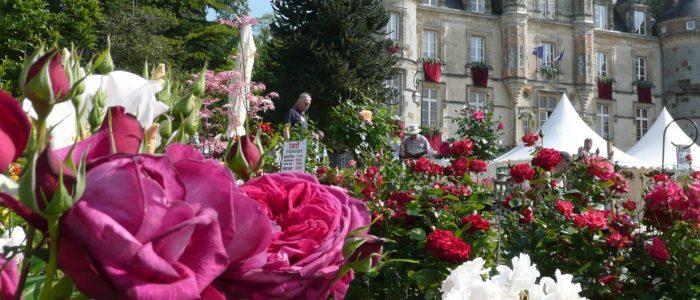 Chóteau-de-la-Roche-Bagnoles-Cr®dit-Grand-Domaine-Bagnoles-de-lOrne-1760x530